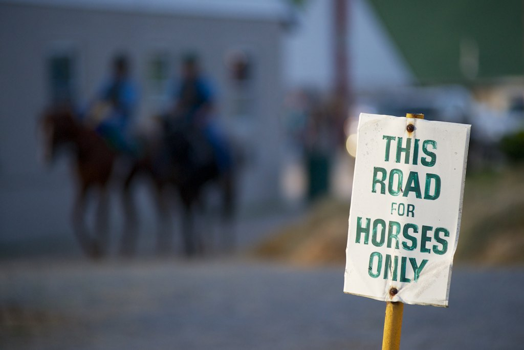 This Road For Horses Only